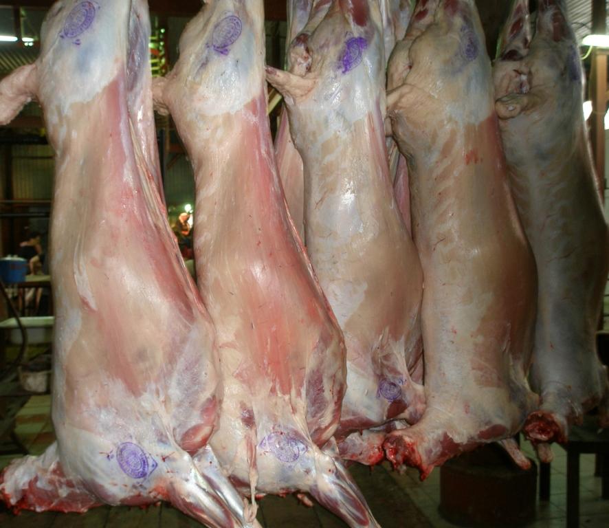 لحم خروف